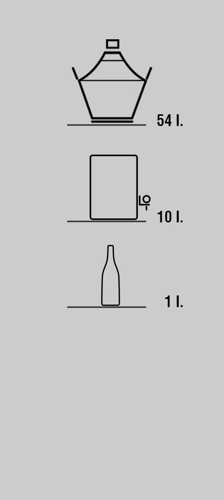 Acquisto vini in damigiana, bag in box, bottiglia di Az. Silvio Bragagnolo
