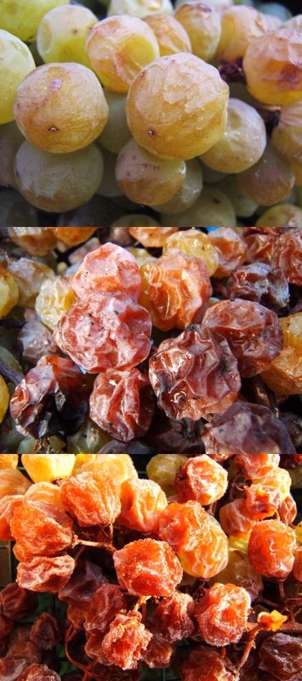 uva appassita al sole per produzione di vini passiti